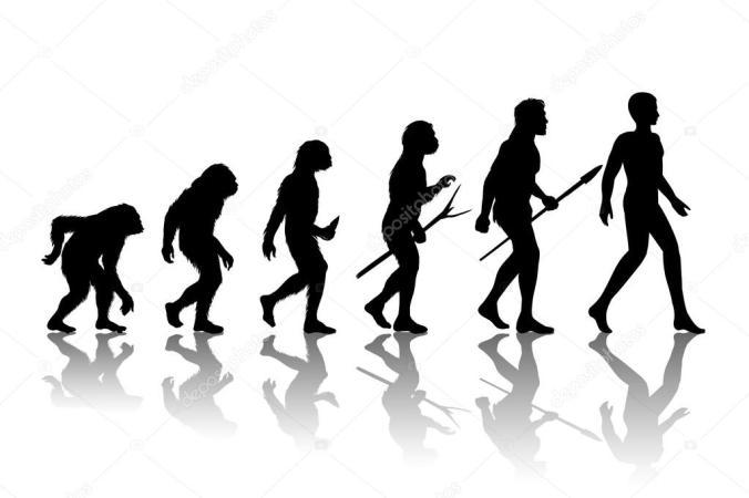 human transformation.jpg