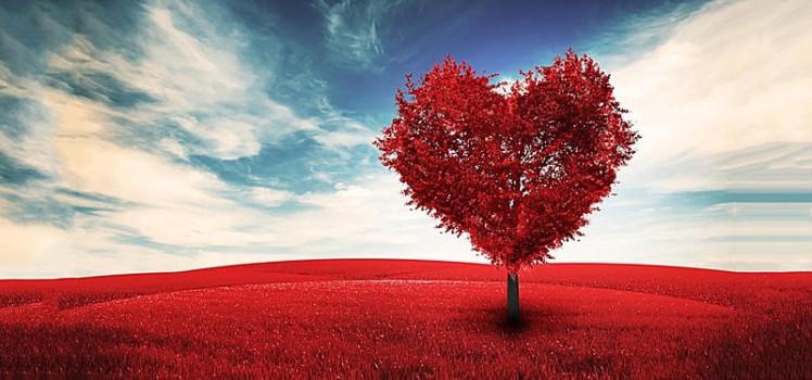 red-love.jpg